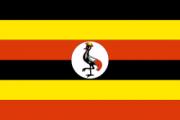 西撒哈拉国旗